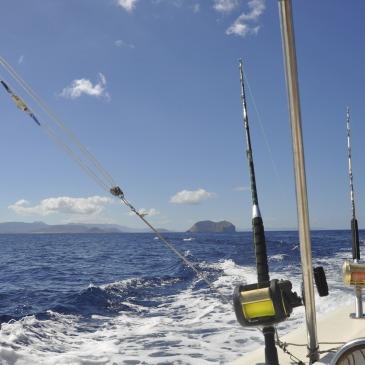 LANZAROTE SPORT FISHING