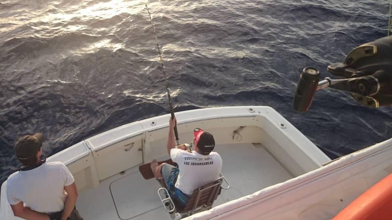 BIG GAME FISHING SEASON FINALIZES IN LANZAROTE.
